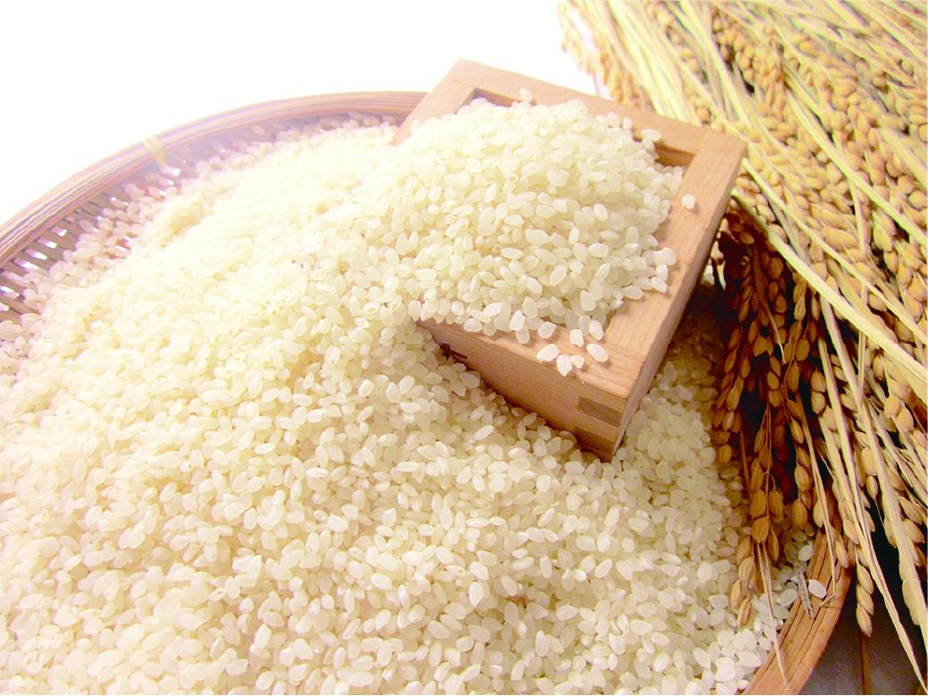 小池農園こめハウス「米」