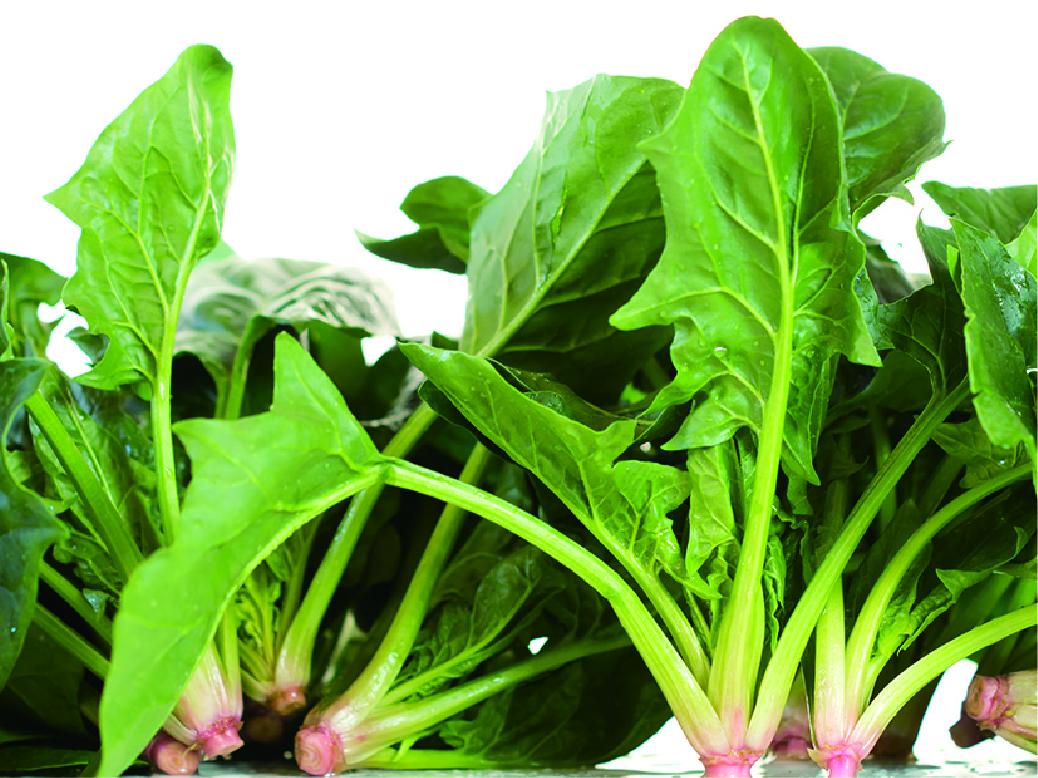 小池農園こめハウス「野菜」